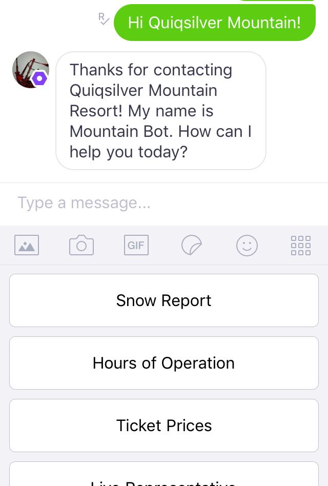 Quiq Bot Developer Guide